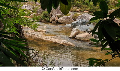 closeup view of mountain stream through plant branches in...