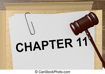 Chapter 11 Title On Legal Documents