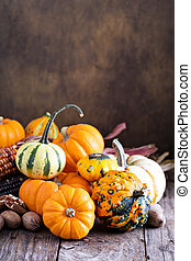 Pumpkins, indian corn and variety of squash on a rustic...