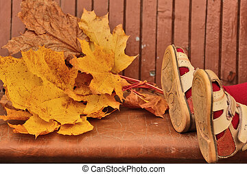 Baby legs in sandals and yellow maple leaves lying on bench...