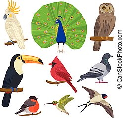 Bird Drawn Icon Set - Birds peacock toucan bullfinch dove...