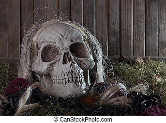 Scary Grim Reaper - Scary grim reaper skull on a wood...