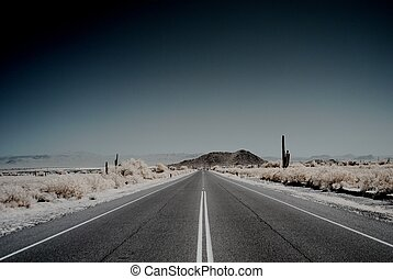 Desert Mountain Road - Moonlight desert road with saguaro...