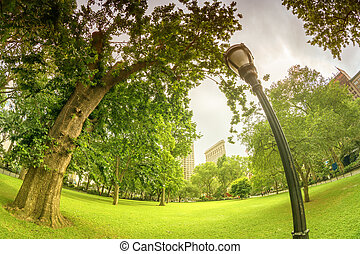 Madison Square Park, New York City.