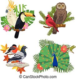 Birds And Flowers Set - Tropical and forest birds on tree...