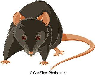 Evil rat - Vector image of a gray evil rat