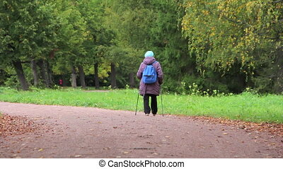 Old woman Nordic walking in the aut