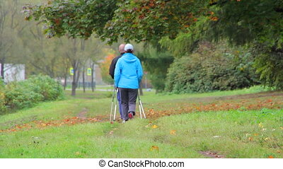 couple Nordic walking in autumn Park