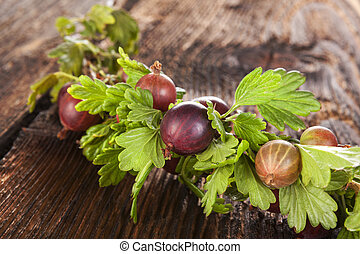 Red gooseberries - Red gooseberries with green leaves...