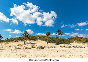 del,  playa,  Este, キューバ