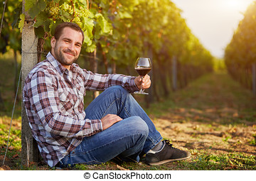 Winemaker siting  in vineyard with a glass of red wine, toned.