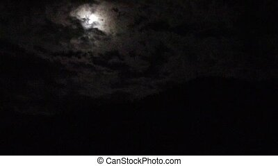 Coyotes Howling at the moon - A full moon hidden behind the...