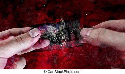 Dead moth abstract background