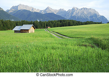 Pasture in the alps Karwendel mountains, Bavaria, Germany...
