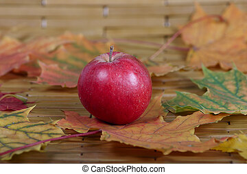 Red apple among autumn leaves