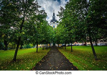 Trees along a path and Katarina kyrka, in Södermalm,...