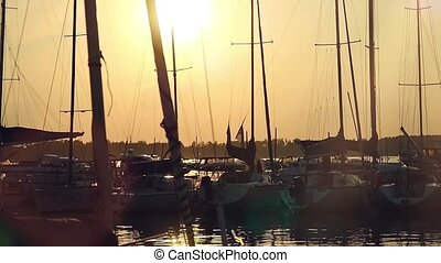 Marine sunset with sailboats and flying birds. Slowmotion...