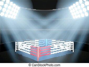 night boxing prize ring