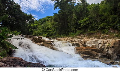 foamy mountain stream against tropical plants blue sky -...