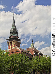 Subotica town hall - Town hall in Subotica, Serbian town...