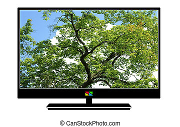 Modern LCD TV with a bright beautiful picture