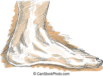 left human foot with highlights. - hand sketch drawing...