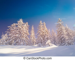 Winter landscape near Vogel ski center in mountains Julian...