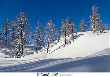 Winter landscape near Vogel ski center in mountains Julian...
