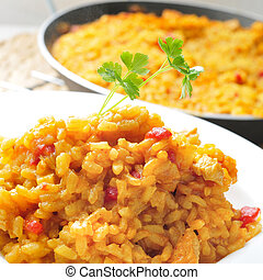 spanish chicken paella - closeup of a plate with spanish...