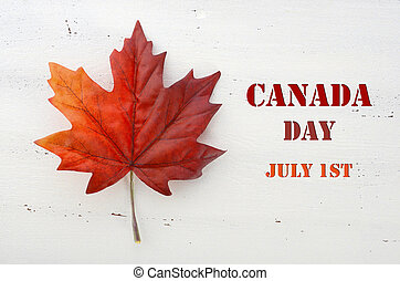 Happy Canada Day red silk maple leaf on white wood shabby...
