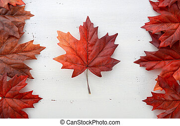Happy Canada Day red silk leaves in shape of Canadian Flag....