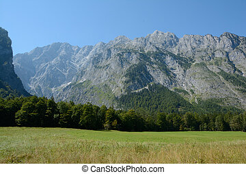 Meadow, forest and mountains - Meadow, forest and mountains...