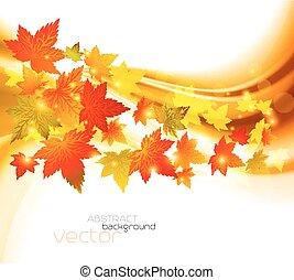 Autumnal leaf of maple