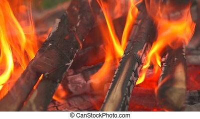 live coals closeup