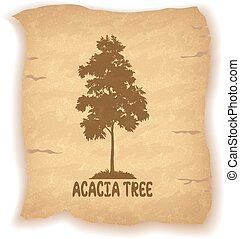 Acacia Tree on Old Paper - Acacia Tree Silhouette and the...