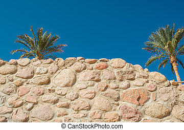 Stone wall and palms against the blue sky