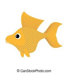 Goldfish on white background Fabulous fish fulfills desires...