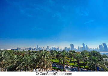 Palm trees and distant view of the city