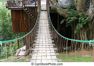 pedestrian rope bridge across little valley - pedestrian...