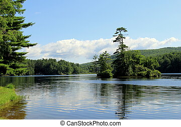 Peaceful scene of water and pine - Peaceful scene of lake...