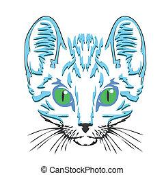A head of a cat  - A head of a white cat