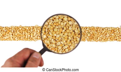 Magnifying glass increases the peas grains, motion up