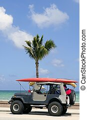 Florida surfer car with surfboard blue sky and palm tree
