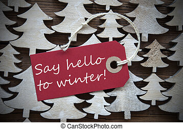 Red Christmas Label With Say Hello To Winter - Red Christmas...