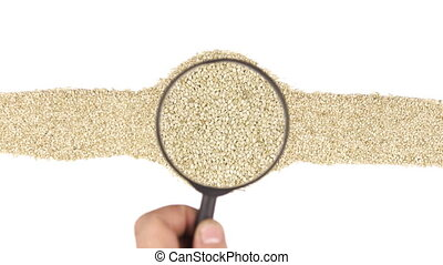 Magnifying glass increases the sesame seeds, motion up