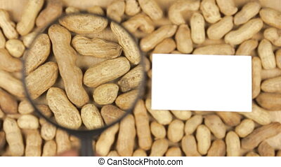 Magnifying glass increases the peanut nuts and business card...