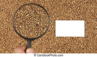 Magnifying glass increases the buckwheat grains and  business card with space for your text