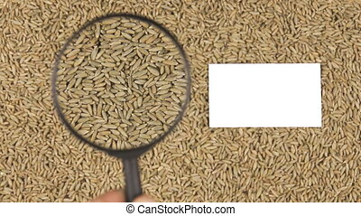 Magnifying glass increases the rye grains and business card...