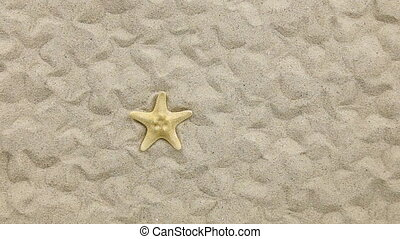 Approximation of starfish lying on the sand, top view