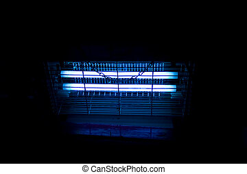 Insect killer - Blue bulbs in an industrial insect...